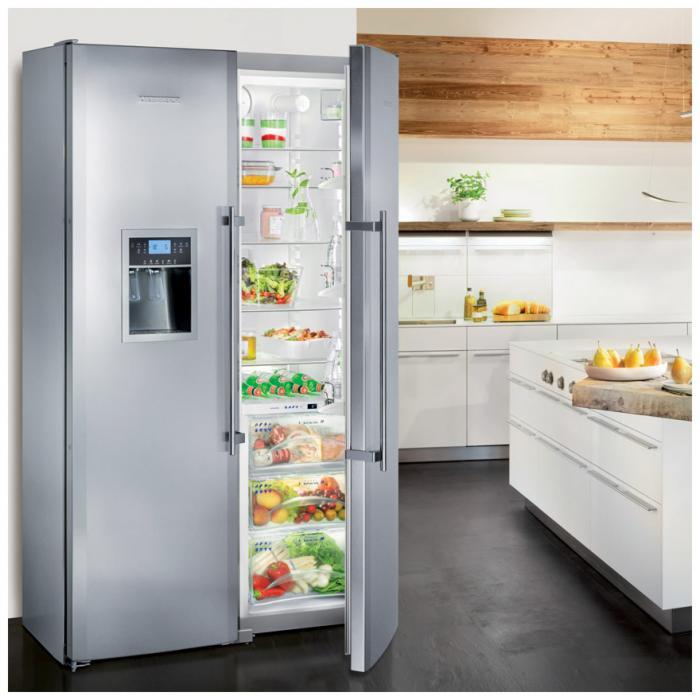 Лучшие холодильники для кухни