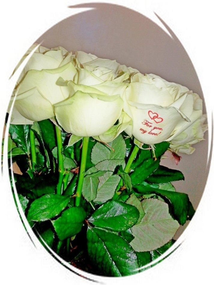 Что обозначают белые розы в подарок девушке 22